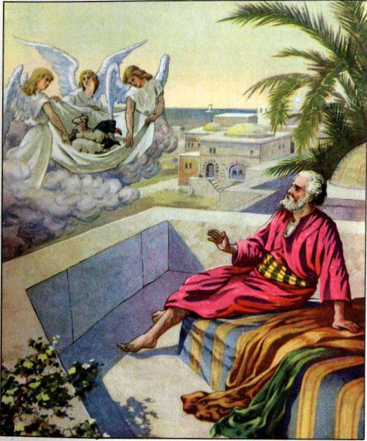 Peter's Vision Acts 10:9-12